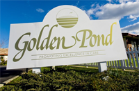 goldenpond1