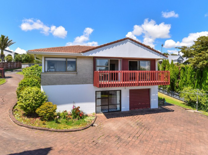 17-paulownia-place-totara-heights