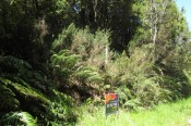 Lot 9 Clifton Road, Kaiata